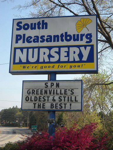 South Pleasantburg Nursery | 1135 S  Pleasantburg Drive